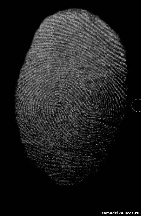 Как снимать отпечатки пальцев в домашних условиях с предметами 973